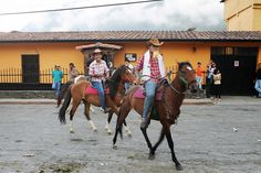 Caballos, Ferias de San Isidro Labrador - Santo Domingo - Mérida - Venezuela
