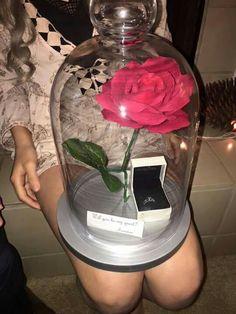 Pedido de namoro, que lindo.                                                                                                                                                                                 Mais #aliançadenamoro #aliançanamoro #alianças