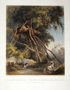 Karl Bodmer (1809-1893)  Tombs of Assiniboin Indians on Trees  from Travels in the Interior of North America  Published:  London and Paris  1832-1843 Hand-colored aquatints Dimensions:  Varied