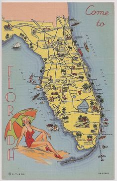 Vintage Florida Tourist Map Curt Teich Vintage Linen Postcard The Tropical Florida Series Bathing Beauty Souvenir Vintage Travel Posters, Vintage Postcards, Visual Resume, Tourist Map, Vintage Florida, Old Maps, Gulf Of Mexico, Bathing Beauties, Vintage Linen