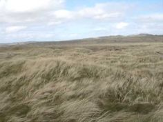 Ballyliffin Glashedy 12th tee box (360)