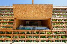 david-guarino-zillion-caban-beach-project-tokyo-designboom09