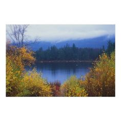 Lily Pond, Kancamagus Highway, New Hampshire (pinned by haw-creek.com)