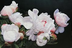 Heather Peonies Print by Thomas Darnell