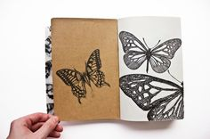 Insects Book: Illustration by Thomas Wightman, via Behance