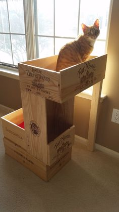 Homemade cat condo made from wine crates. I love this!!
