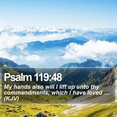 Psalm 119:48 My hands also will I lift up unto thy commandments, which I have loved ... (KJV)  #Bible #Inspired #Prayer #YouthMinistry #GodIsGood http://www.bible-sms.com/
