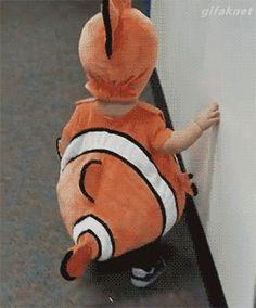 Let's find nemo. http://ift.tt/2fdJABV
