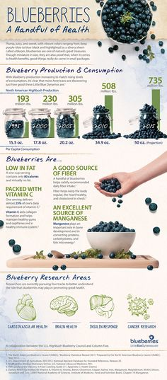 The nutritional benefits of blueberries - have you had your cup today? Vitamin C, fiber, manganese and more help promote cardiovascular health, brain health, insulin response.the list goes on! Can Dogs Eat Blueberries, Blueberries Nutrition, Blueberry Nutrition Facts, Highbush Blueberry, Blueberry Farm, Health And Wellness, Health Fitness, Holistic Nutrition, Clinical Psychologist