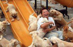 En chine, un groupe de militants de la cause animale a réuni l'équivalent de presque 8 000 € pour acheter tous les chiens d'un camion qui les emmenaient à abattoir en vue de les transformer en viande. Puis, ils ont construit ce parc pour que les chiens sauvés puissent vivre en attendant d'être adoptés.