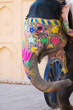 i hope that elephant feels as beautiful as it looks