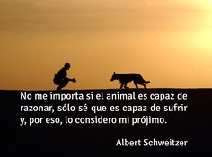 Frase de amor a los animales - Nuestro prójimo.