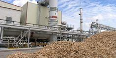 La evolución de la biomasa en España - https://www.renovablesverdes.com/biomasa-2/