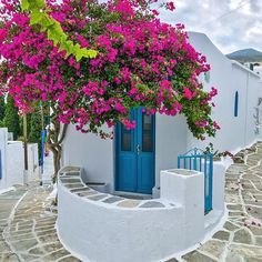 Lefkes, the highest village on the island of Paros, Greece, was once the medieval capital of the island and today, it's a picturesque hamlet of whitewashed houses in a maze of stone alleyways, highlighted with accents of bright bougainvillea around every corner. . . Many thanks to this fantastic hub for featuring my photo!! @travel_drops . #loves_greece_ #infinity_hdr #great_greece #super_greece_channel #perfec...