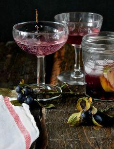 A Sloe Gin Rickey vi