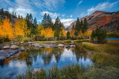 Fall color at North Lake in the Eastern Sierra outside of Bishop, California - Mimi Ditchie Photography/Getty Images