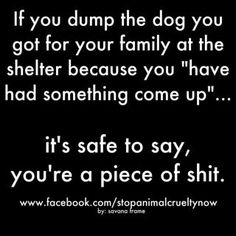 Sorry if this offends anyone, but I happen to think it's true-- not sorry! hope to offend the assholes in this world. I Love Dogs, Puppy Love, Animals And Pets, Cute Animals, Diy Pet, Susa, Stop Animal Cruelty, Dog Rules, Animal Quotes