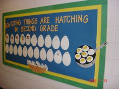 Egg-citing things are hatching in Bible Class