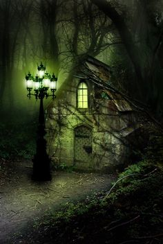 enchanted forest by lina  There are stories to be written just looking at this