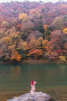 Kyoto Autumn Sightse