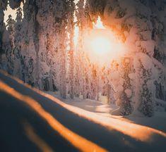 49.9 k gilla-markeringar, 373 kommentarer – Konsta Punkka (@kpunkka) på Instagram Photo Instagram, Instagram Posts, Finland, Playground, Scenery, Photos, Snow, Mountains, Winter