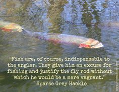 More wisdom from Sparse Grey Hackle..  http://rivertraditions.com/