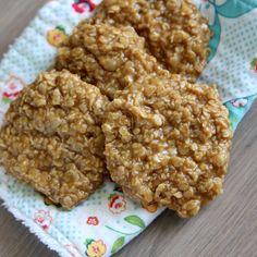Um, yeah!  Biscoff No-Bake Cookies | Spoonful