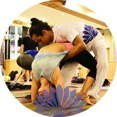 Multi Style Yoga Teacher Training in Rishikesh India