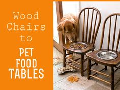 Repurpose ... my dogs will need a child's chair or stool but this wold be great