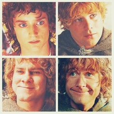 Which Hobbit from Lord of the Rings are YOU? I was Frodo and Merry tied.