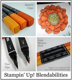 Dawn Olchefske - Blendability info and sneak peek.  More pictures of each of the new colors using the Blended Blooms stamp.