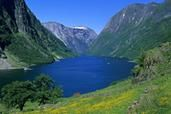 Norway in a nutshell® - Fjord Tours & Round Trips - What To Do - Visitor