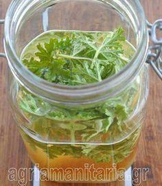 Φτιάχνω λικέρ αρμπαρόριζας Η αρμπαρόριζα θεωρείται από τα πλέον αποτελεσματικά για το άγχος, τη κούραση, και τη νευρικότητα, άρα ένα ποτηράκι λικέρ σίγουρα μπορεί να μας χαλαρώσει. Pickles, Cucumber, Liquor, Spinach, Food To Make, Smoothies, Lemon, Food And Drink, Herbs