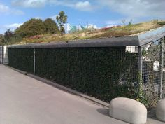 Groene fietsenstalling met op het dak een  daktuin