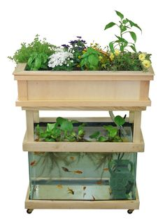 Hydroponic Gardening Ideas Instructions for using a 20 gallon aquarium for setting up a small aquaponics system. (This could be a fun way to experiment growing greens hydroponically. Aquaponics System, Backyard Aquaponics, Aquaponics Fish, Fish Farming, Hydroponic Fish Tank, Indoor Hydroponic Gardening, Vertical Farming, Aeroponic System, Permaculture