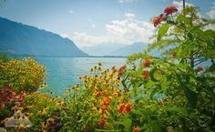 Montreux - Chamelle Photography
