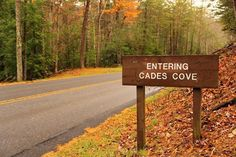 Cades Cove is our happy place. It's located in the Great Smoky Mountains National Park.