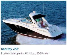 SeaRay 355: 2 cabins, toilet, AC, 12pax, 20-25 knots