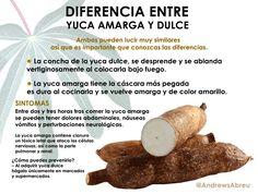 """""""#ATENCIÓN Esta es la diferencia entre la yuca amarga y la dulce:"""""""