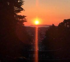 宮地嶽神社 夕陽 光の道 幻想的