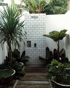 outdoor shower.. greenery and water.. soak and feel.. stand and cleanse..
