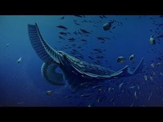 Gentle giants of the Cambrian period, scientists recently discovered the Tamisiocaris borealis (above) that lived about 520 million years ago.  Sort of a Cambrian period whale.