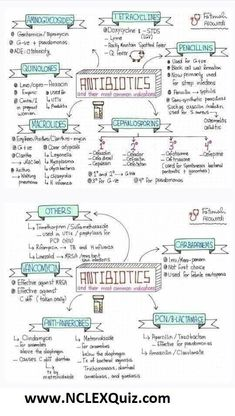 Classification of Antibiotics, Easy to Understand and Learn - NCLEX Quiz Pharmacy School, Medical School, Pa School, Medical Art, Nclex, Nursing School Notes, Ob Nursing, Nursing Schools, Nursing Degree