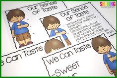 Our sense of taste c