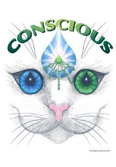 Of Cats and Dogs: Animal consciousness in the New Age | Sacred Space in Time
