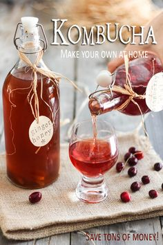 Make Your Own Kombucha | by Sonia! The Healthy Foodie