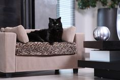 Fauteuil pour chat déhoussable - Structure bois - Matelas avec mousse à mémoire de forme ♥ #igcutestcats #kittens_of_world #kittenslover #kittensfordays #kittens_of_instagram #kittensofday #kittens_today #adorablekitten #catsday #cats_on_instagram #catseverywhere #kittensoninstagram #catsmeow #catsofinstagram #catsforslife #catsarecool #cutestcatsofinstagram #kittykitty #kittenspace #kittensofinstagram #kittylove #caturday #giusypop #deco #décoration #homedecor
