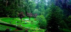 20 Vintage Places to Visit in Ooty #travel #travelindia #hills #hillsstation