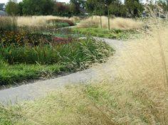 Dorpsweide-Katwijk-by-NRLVV-14 « Landscape Architecture Works | Landezine