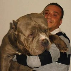 WOW!!!! that doggie needs his own zip code..peace b with u both